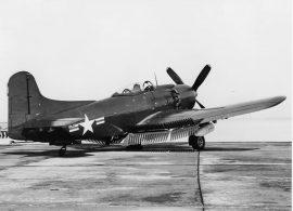 AM -1Mauler